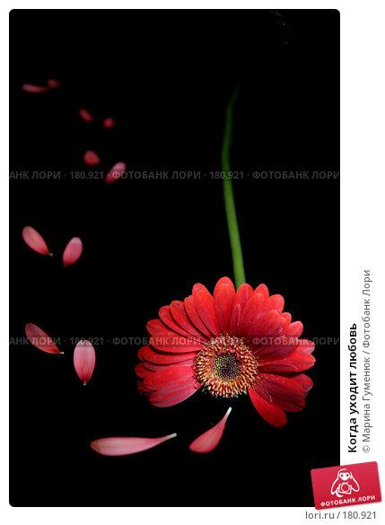 Купить «Когда уходит любовь», фото № 180921, снято 27 ноября 2007 г. (c) Марина Гуменюк / Фотобанк Лори