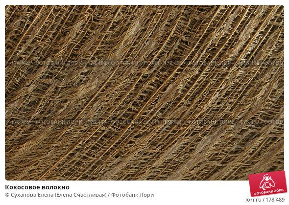 Кокосовое волокно, фото № 178489, снято 20 ноября 2004 г. (c) Суханова Елена (Елена Счастливая) / Фотобанк Лори