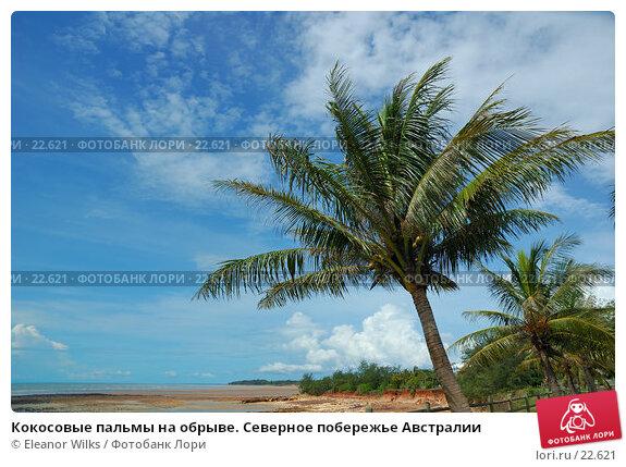 Кокосовые пальмы на обрыве. Северное побережье Австралии, фото № 22621, снято 6 апреля 2007 г. (c) Eleanor Wilks / Фотобанк Лори