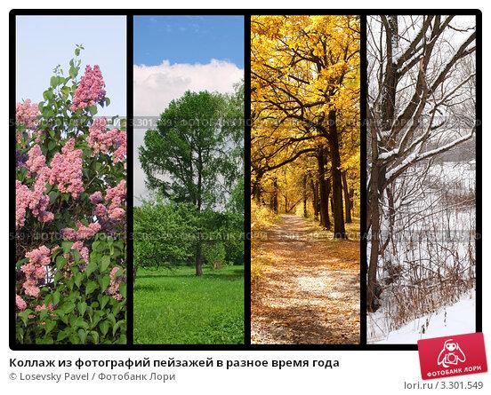 Купить «Коллаж из фотографий пейзажей в разное время года», фото № 3301549, снято 16 июля 2019 г. (c) Losevsky Pavel / Фотобанк Лори