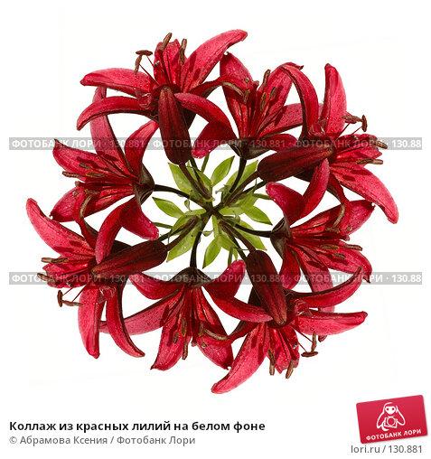 Коллаж из красных лилий на белом фоне, фото № 130881, снято 22 июля 2006 г. (c) Абрамова Ксения / Фотобанк Лори