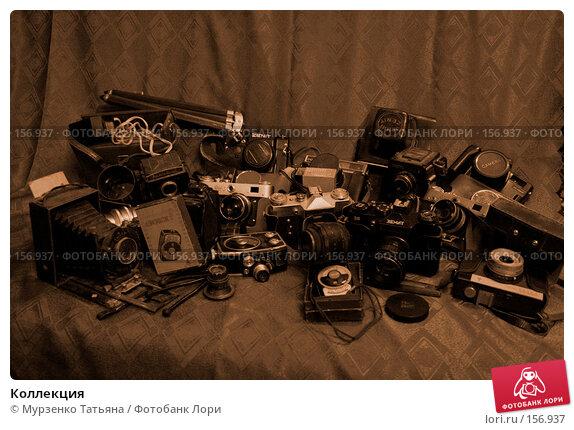 Купить «Коллекция», фото № 156937, снято 5 января 2007 г. (c) Мурзенко Татьяна / Фотобанк Лори