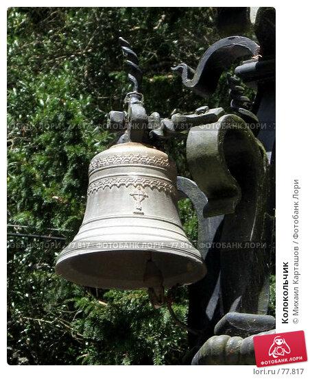 Колокольчик, эксклюзивное фото № 77817, снято 29 июля 2007 г. (c) Михаил Карташов / Фотобанк Лори