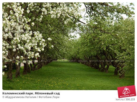 Коломенский парк. Яблоневый сад, фото № 300233, снято 10 мая 2008 г. (c) Абдурагимова Наталия / Фотобанк Лори