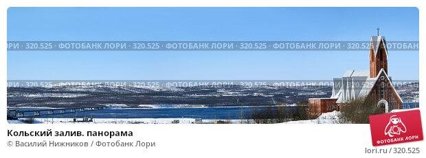 Кольский залив. панорама, фото № 320525, снято 23 февраля 2017 г. (c) Василий Нижников / Фотобанк Лори