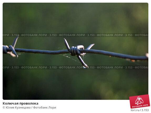 Колючая проволока, фото № 3153, снято 23 августа 2017 г. (c) Юлия Кузнецова / Фотобанк Лори