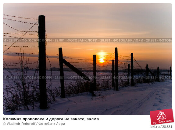 Колючая проволока и дорога на закате, залив, фото № 28881, снято 27 марта 2017 г. (c) Vladimir Fedoroff / Фотобанк Лори