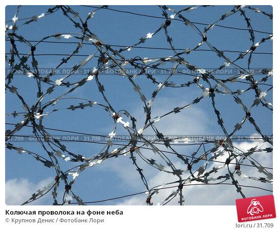 Колючая проволока на фоне неба, фото № 31709, снято 13 июля 2005 г. (c) Крупнов Денис / Фотобанк Лори