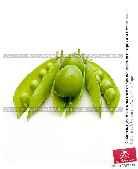 Композиция из открытого стручка зеленого гороха и незрелых плодов сливы, фото № 267157, снято 29 мая 2006 г. (c) Анатолий Заводсков / Фотобанк Лори