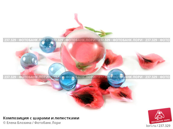Композиция с шарами и лепестками, фото № 237329, снято 30 марта 2008 г. (c) Елена Блохина / Фотобанк Лори