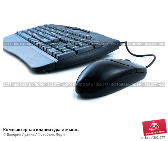 Компьютерная клавиатура и мышь, фото № 202277, снято 19 декабря 2007 г. (c) Валерия Потапова / Фотобанк Лори