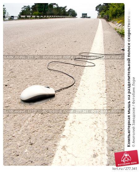 Компьютерная мышь на разделительной полосе скоростного шоссе, фото № 277341, снято 22 мая 2006 г. (c) Анатолий Заводсков / Фотобанк Лори
