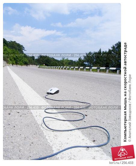 Компьютерная мышь на скоростной автостраде, фото № 256433, снято 22 мая 2006 г. (c) Анатолий Заводсков / Фотобанк Лори