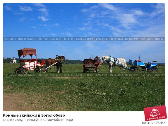 Конные экипажи в Боголюбово, фото № 126453, снято 2 июня 2007 г. (c) АЛЕКСАНДР МИХЕИЧЕВ / Фотобанк Лори