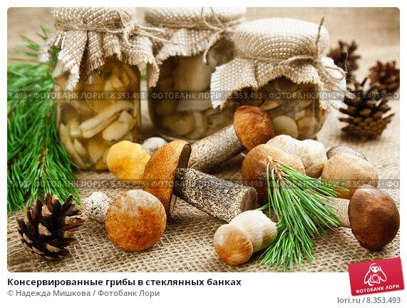 Купить «Консервированные грибы в стеклянных банках», фото № 8353493, снято 28 июля 2015 г. (c) Надежда Мишкова / Фотобанк Лори