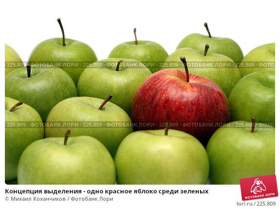 Купить «Концепция выделения - одно красное яблоко среди зеленых», фото № 225809, снято 16 марта 2008 г. (c) Михаил Коханчиков / Фотобанк Лори
