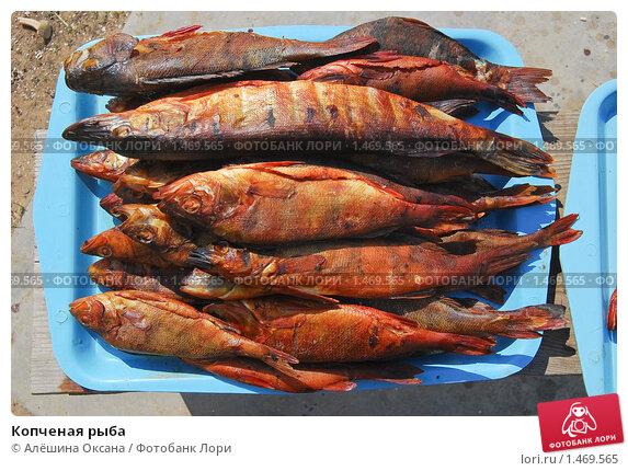Купить «Копченая рыба», эксклюзивное фото № 1469565, снято 8 апреля 2009 г. (c) Алёшина Оксана / Фотобанк Лори