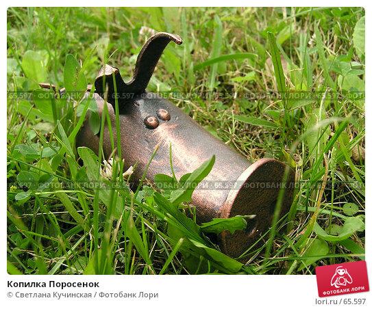 Копилка Поросенок, фото № 65597, снято 5 июля 2007 г. (c) Светлана Кучинская / Фотобанк Лори