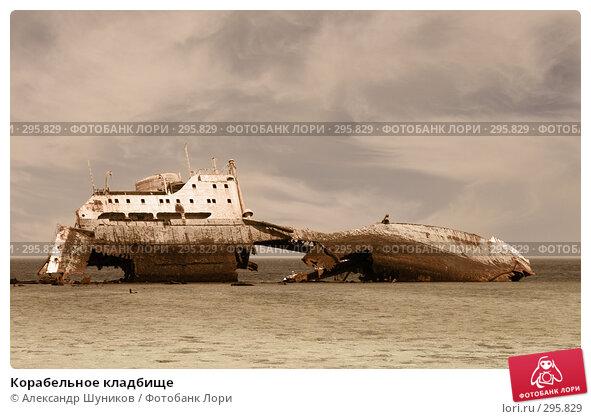 Корабельное кладбище, фото № 295829, снято 13 мая 2008 г. (c) Александр Шуников / Фотобанк Лори