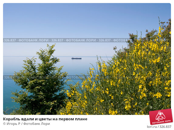 Корабль вдали и цветы на первом плане, фото № 326837, снято 5 июня 2008 г. (c) Игорь Р / Фотобанк Лори