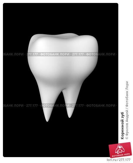Коренной зуб, фото № 277177, снято 18 августа 2017 г. (c) Фролов Андрей / Фотобанк Лори