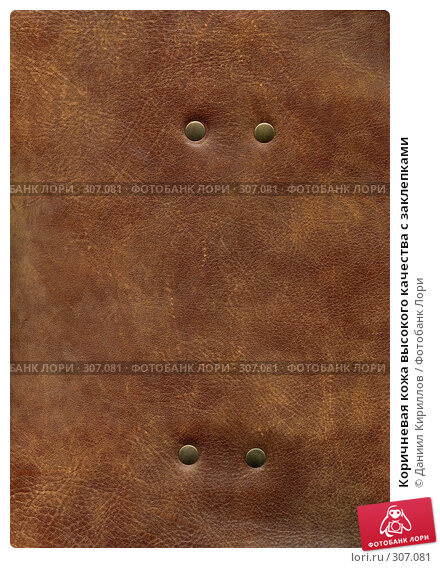 Коричневая кожа высокого качества с заклепками, фото № 307081, снято 28 июля 2017 г. (c) Даниил Кириллов / Фотобанк Лори