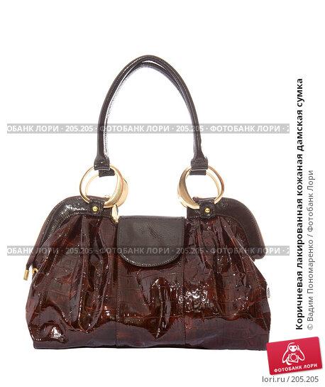 Коричневая лакированная кожаная дамская сумка, фото № 205205, снято 9 февраля 2008 г. (c) Вадим Пономаренко / Фотобанк Лори