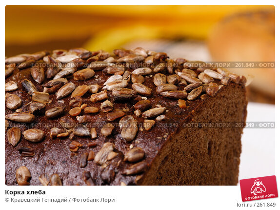 Купить «Корка хлеба», фото № 261849, снято 21 ноября 2004 г. (c) Кравецкий Геннадий / Фотобанк Лори