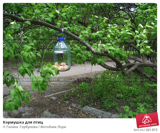 Кормушка для птиц, фото № 261813, снято 22 апреля 2007 г. (c) Галина  Горбунова / Фотобанк Лори