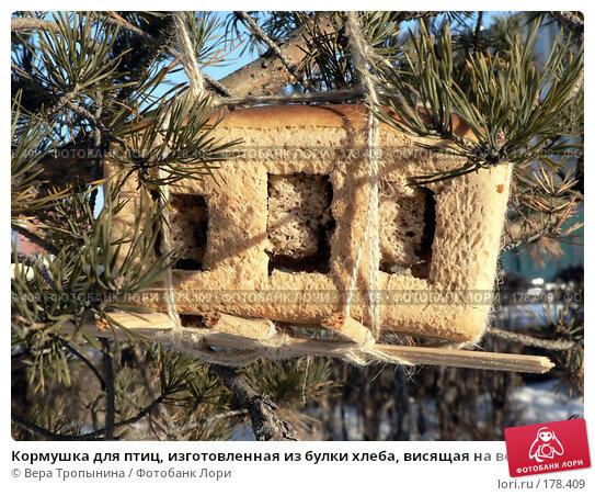 Купить «Кормушка для птиц, изготовленная из булки хлеба, висящая на ветке сосны», фото № 178409, снято 11 апреля 2018 г. (c) Вера Тропынина / Фотобанк Лори