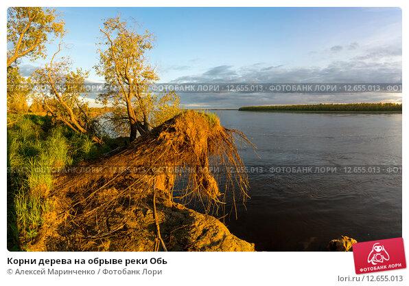 объявления обь река по чистоте Вакансии Поклейка