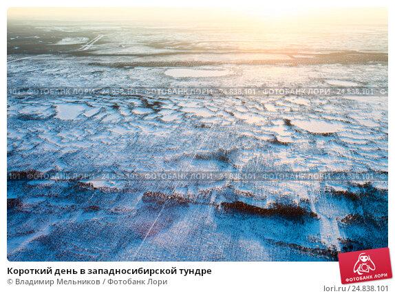 Купить «Короткий день в западносибирской тундре», фото № 24838101, снято 2 апреля 2013 г. (c) Владимир Мельников / Фотобанк Лори