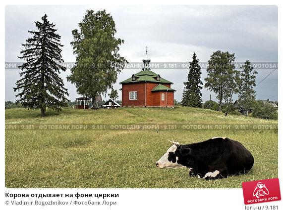 Корова отдыхает на фоне церкви, фото № 9181, снято 10 июля 2006 г. (c) Vladimir Rogozhnikov / Фотобанк Лори