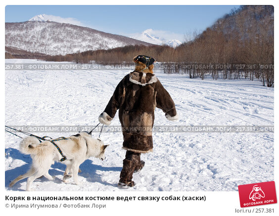 Коряк в национальном костюме ведет связку собак (хаски), фото № 257381, снято 9 марта 2008 г. (c) Ирина Игумнова / Фотобанк Лори