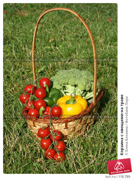 Корзина с овощами на траве, фото № 118789, снято 24 июля 2007 г. (c) Елена Блохина / Фотобанк Лори