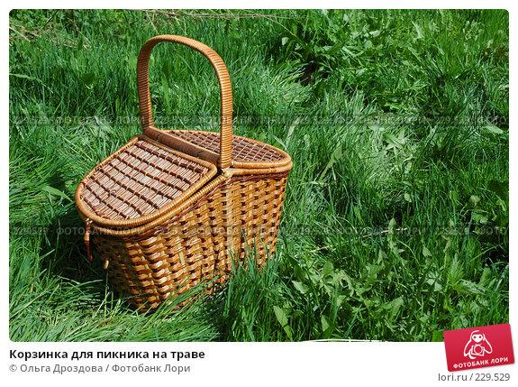 Корзинка для пикника на траве, фото № 229529, снято 14 мая 2005 г. (c) Ольга Дроздова / Фотобанк Лори