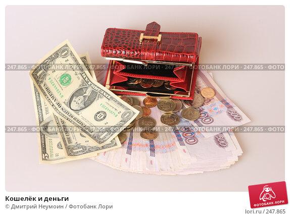 Кошелёк и деньги, эксклюзивное фото № 247865, снято 8 апреля 2008 г. (c) Дмитрий Неумоин / Фотобанк Лори