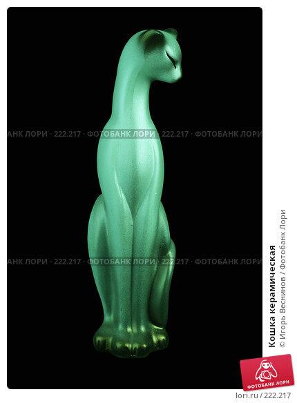 Купить «Кошка керамическая», фото № 222217, снято 9 марта 2008 г. (c) Игорь Веснинов / Фотобанк Лори