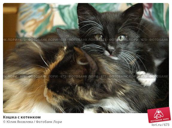 Купить «Кошка с котенком», фото № 673, снято 28 июня 2005 г. (c) Юлия Яковлева / Фотобанк Лори