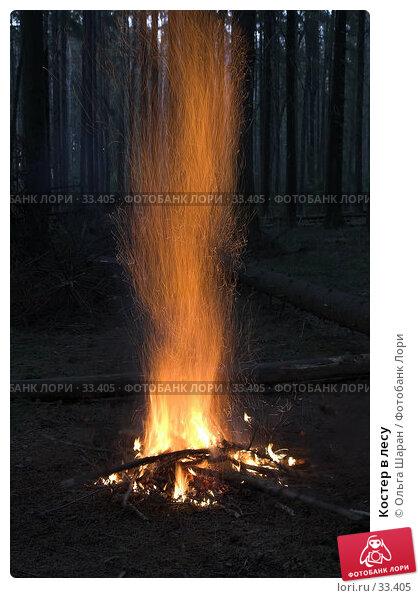 Костер в лесу, фото № 33405, снято 23 марта 2007 г. (c) Ольга Шаран / Фотобанк Лори