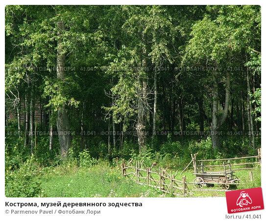 Кострома, музей деревянного зодчества, фото № 41041, снято 15 августа 2006 г. (c) Parmenov Pavel / Фотобанк Лори