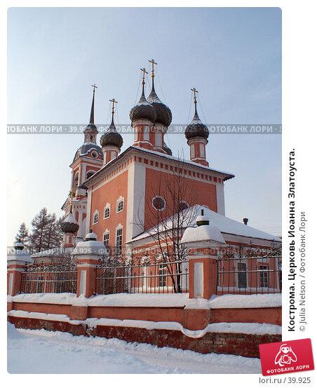 Кострома. Церковь Иоанна Златоуста., фото № 39925, снято 4 января 2005 г. (c) Julia Nelson / Фотобанк Лори