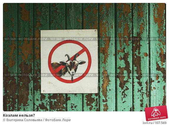 Козлам нельзя?, фото № 107569, снято 8 июня 2007 г. (c) Екатерина Соловьева / Фотобанк Лори
