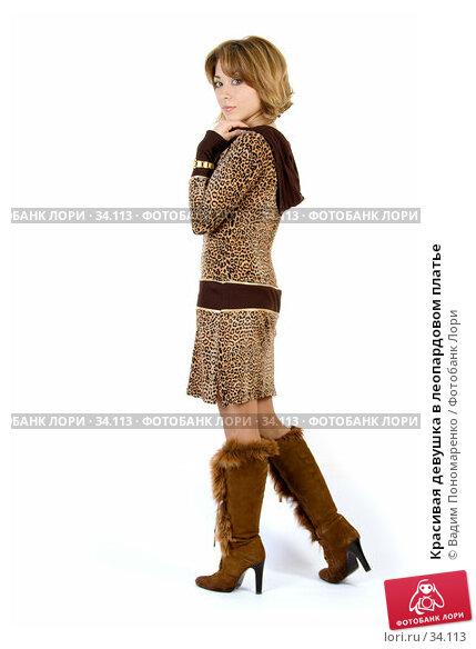 Красивая девушка в леопардовом платье, фото № 34113, снято 24 марта 2007 г. (c) Вадим Пономаренко / Фотобанк Лори