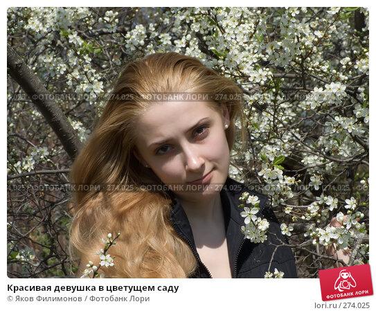 Купить «Красивая девушка в цветущем саду», фото № 274025, снято 1 мая 2008 г. (c) Яков Филимонов / Фотобанк Лори