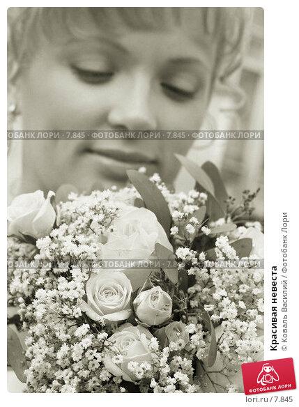 Красивая невеста, фото № 7845, снято 28 июля 2017 г. (c) Коваль Василий / Фотобанк Лори