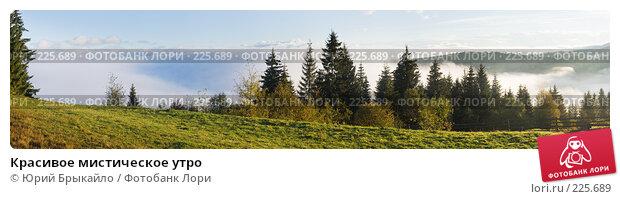 Красивое мистическое утро, фото № 225689, снято 22 января 2017 г. (c) Юрий Брыкайло / Фотобанк Лори