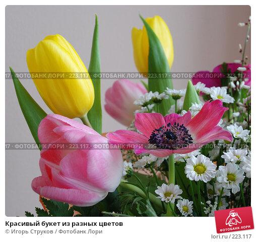 Красивый букет из разных цветов, фото № 223117, снято 7 марта 2008 г. (c) Игорь Струков / Фотобанк Лори