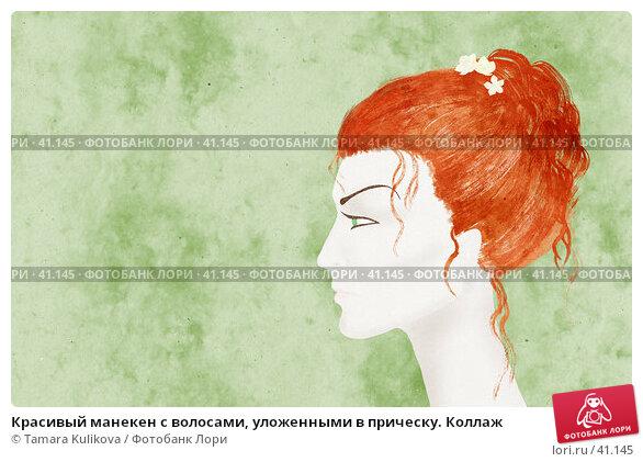 Красивый манекен с волосами, уложенными в прическу. Коллаж, иллюстрация № 41145 (c) Tamara Kulikova / Фотобанк Лори