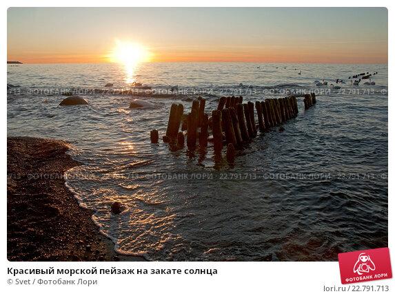 Красивый морской пейзаж на закате солнца. Стоковое фото, фотограф Svet / Фотобанк Лори